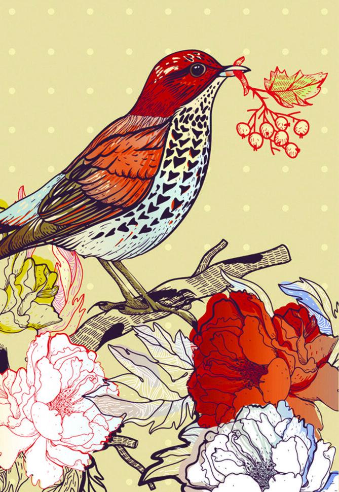 первую цветные картинки с птичками реалистичный